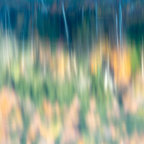 brendanrowlands-blurred-borroso-ICM-4