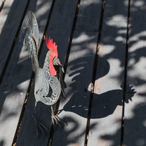brendanrowlands-cockrel-chicken-shadow