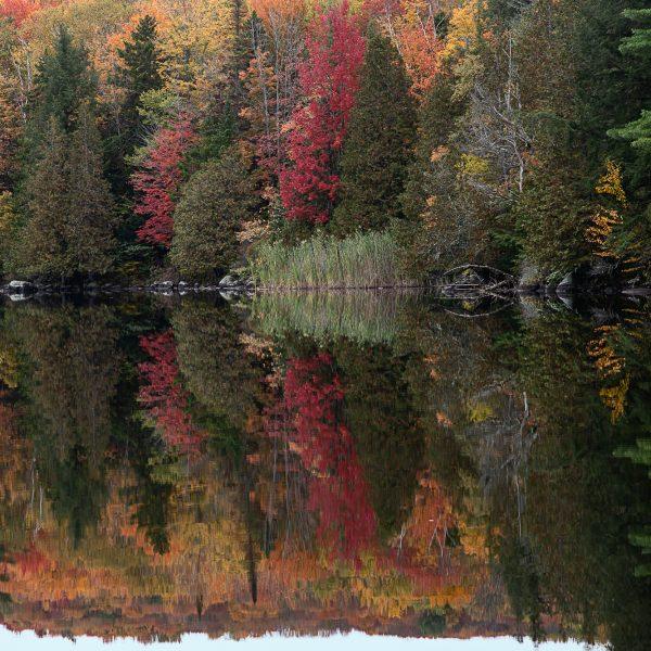 brendanrowlands-stillwater-autumn-vermont