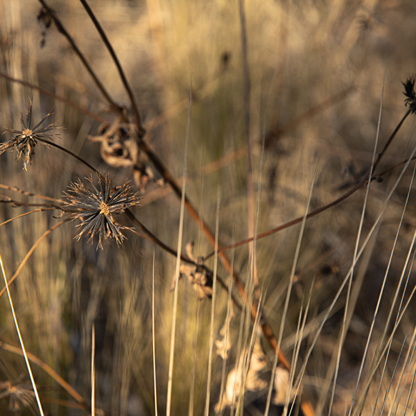 brendanrowlands-ligth-shadow-texture-5